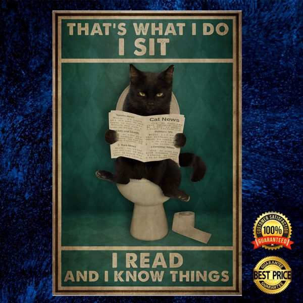 Black Cat That's What I Do I Sit I Read And I Know Things Poster 3