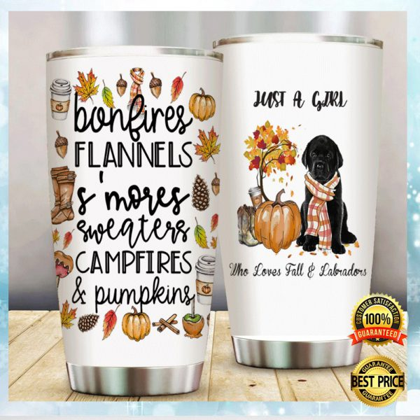 Just A Girl Who Loves Fall And Labradors Tumbler 3