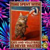 Time Spent With Cats And Volleyball Is Never Wasted Poster 1