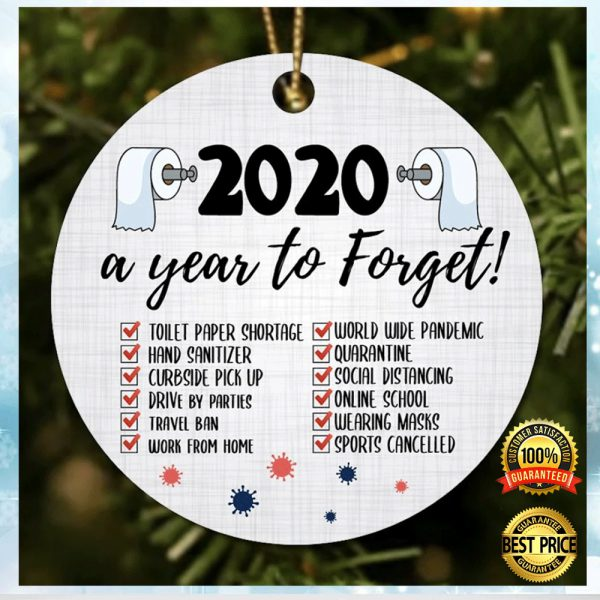 2020 A Year To Forget Christmas Ornament 1