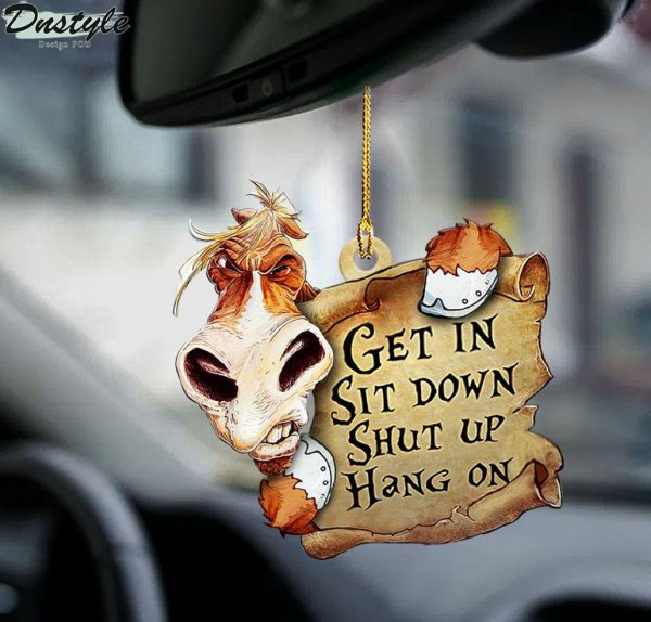 Horse get in sit down shut up hang on ornament