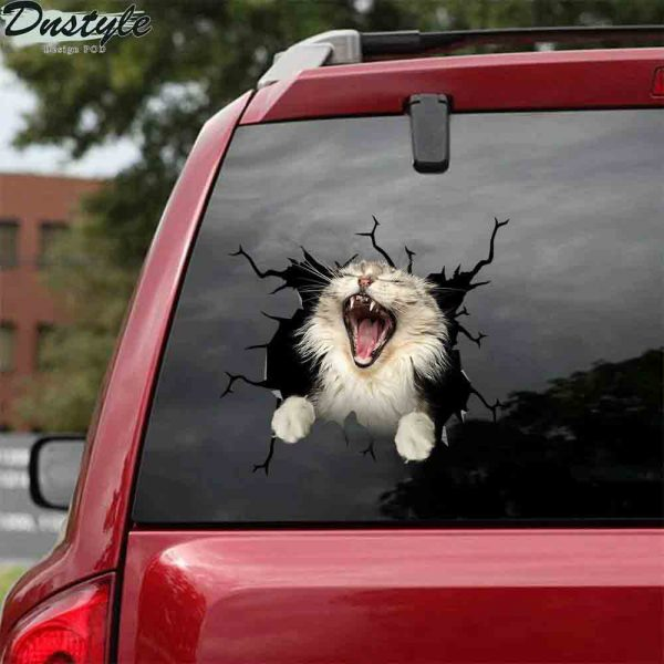The maine coon yawn crack car sticker cats lover